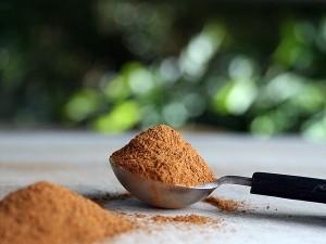 powdered cinnamon in measuring spoon