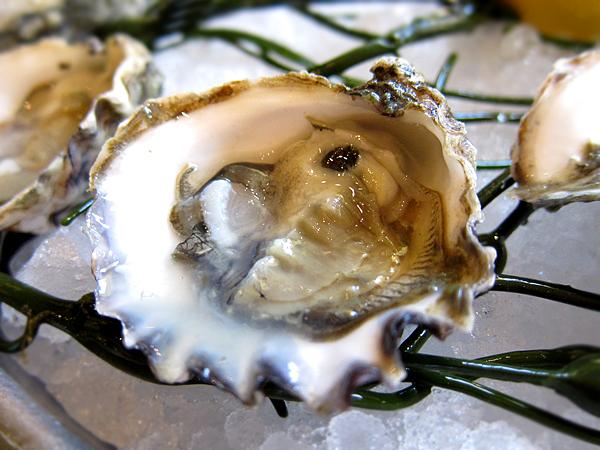 Bouchon Beverly Hills - Kumamoto Oysters