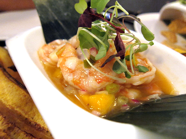 Red O Restaurant by Rick Bayless - Shrimp Ceviche