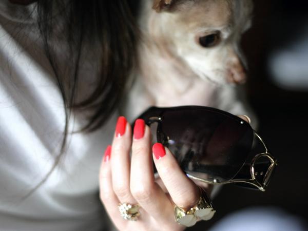 My Chihuahua Bites by OPI Nail Polish