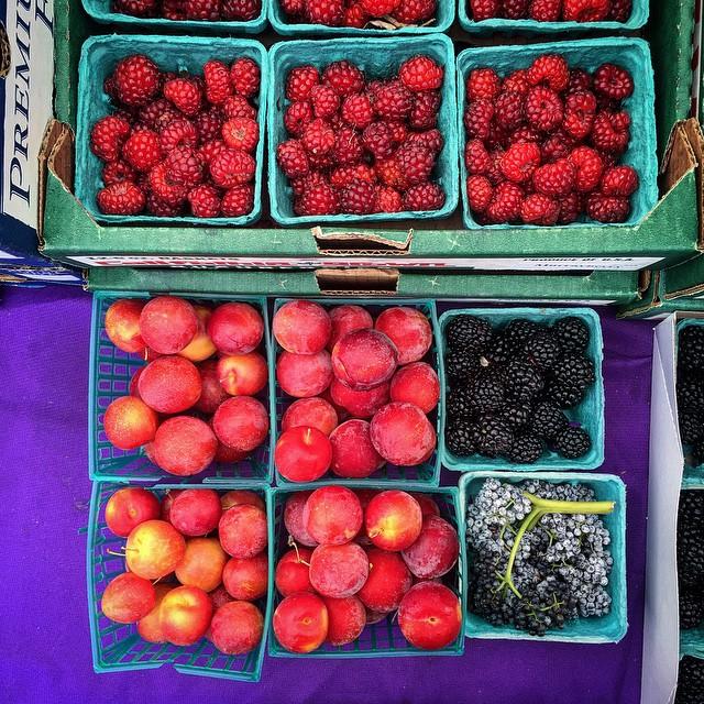 Murray Berries, kiowa blackberries, elderberries, and cherry plum cherrums